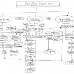 diagram,  Diagram for thinking through my argument